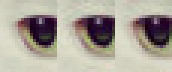 Uncompressed original image (left), libjpeg-encoded JPEG (middle), Guetzli-encoded JPEG (right).
