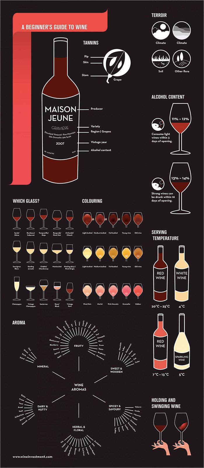 wine-beginner-guide
